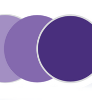 Sports Vision Bend - Transitions Color - Amethyst