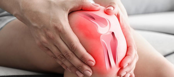 What Ingredients Your Joint Pain Supplements Must Contain?