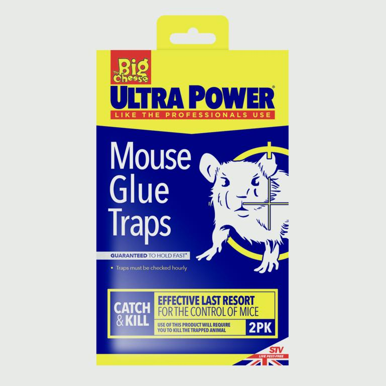 The Big Cheese-RTU Mouse Glue Traps