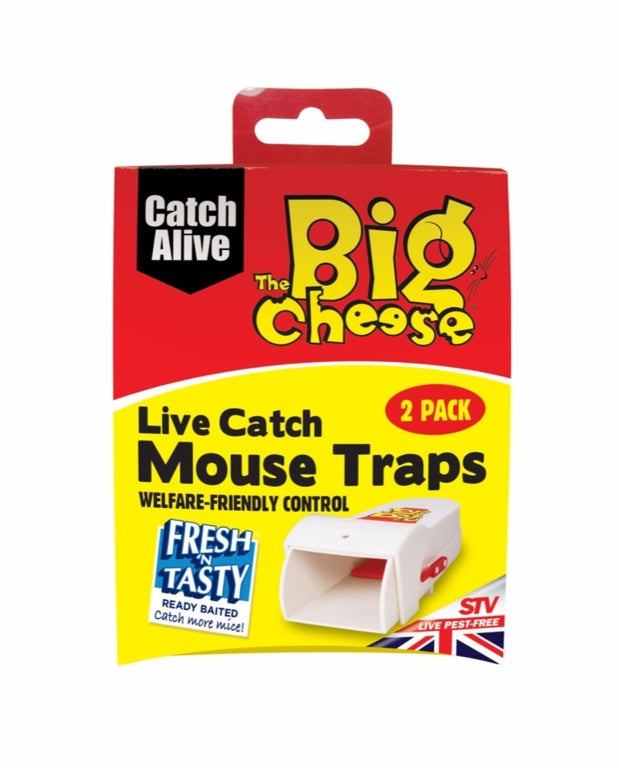 The Big Cheese-Live Catch RTU Mouse Trap