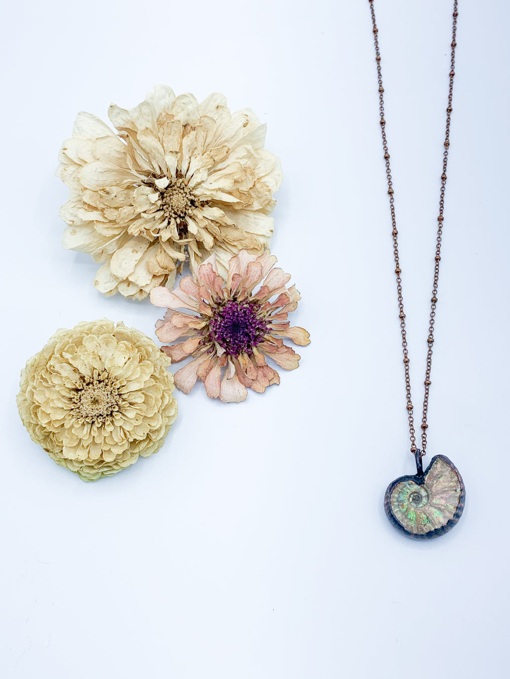 Opalized Ammonite Necklace - Allie & Tess