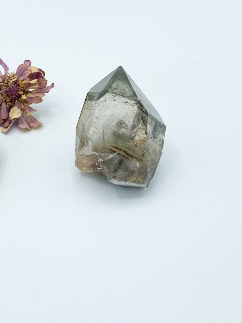 Garden Quartz Points