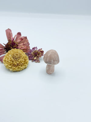 Crystal Mushrooms - Allie & Tess