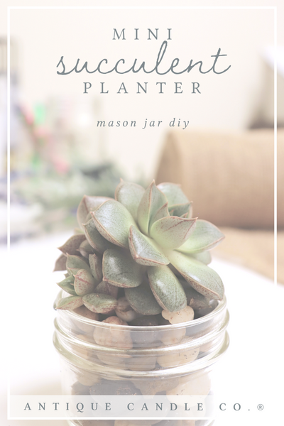 mason jar diy: mini succulent planter
