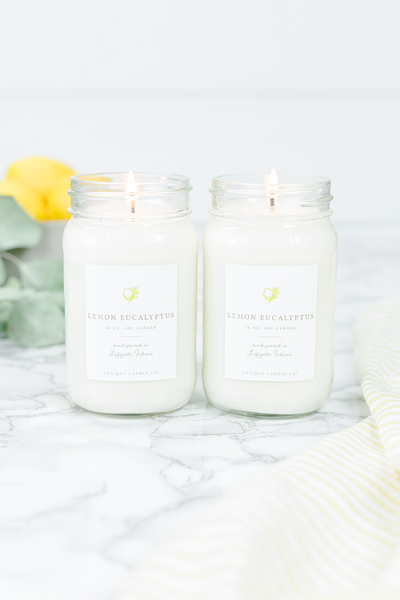 Lemon Eucalyptus Bundle