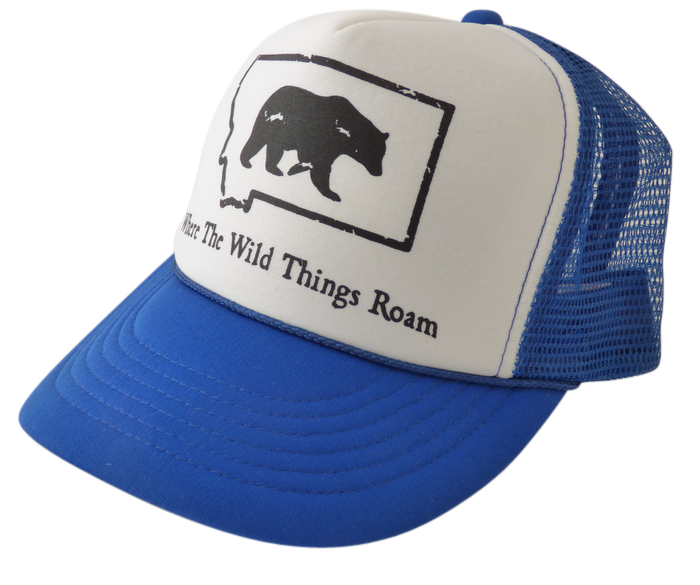 CLEARANCE Youth Blue Bear Hat