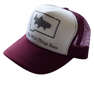 CLEARANCE Youth Maroon Fish Hat