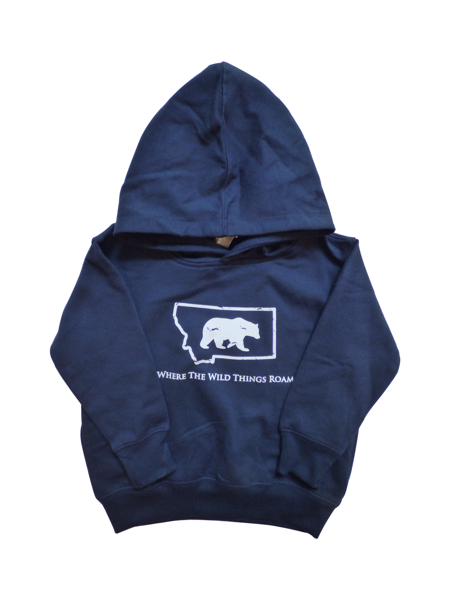 Youth Navy Bear Hoodie