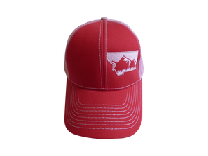 Low Profile Embroidered Mountain Hat Red and Pink
