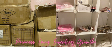 Princess Luxy Online Children's Store Inventory Growth 2020 Canadian Small Black Business