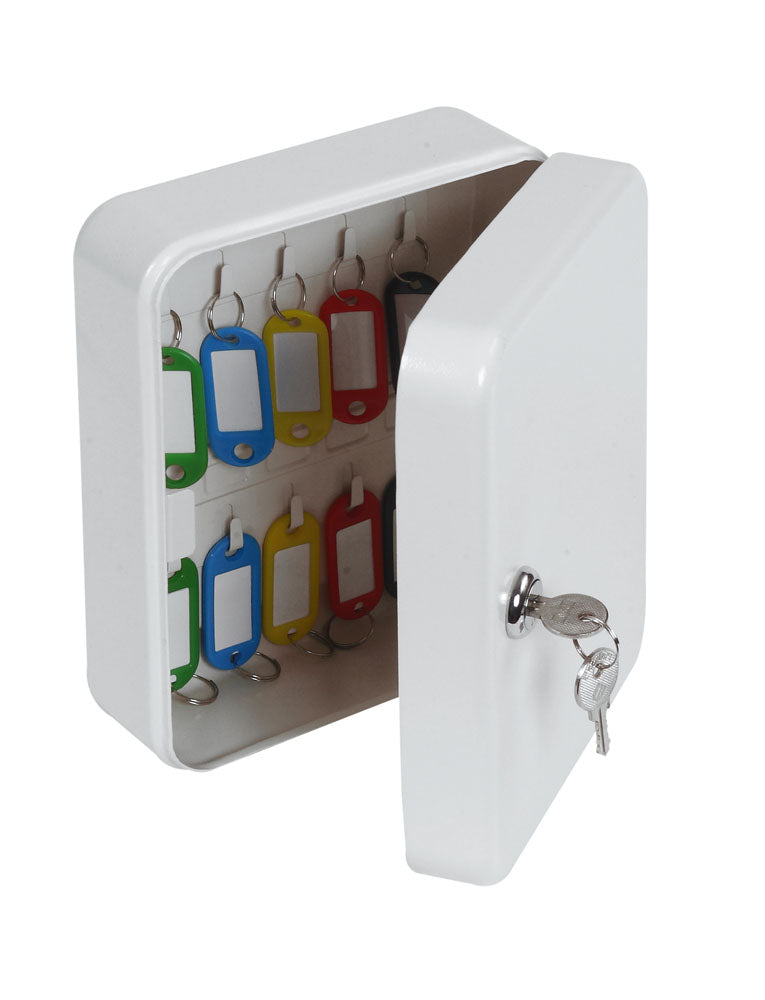 Phoenix 20 Hook Key Box KC0026K with Key Lock - Buy Safes Online Co. UK