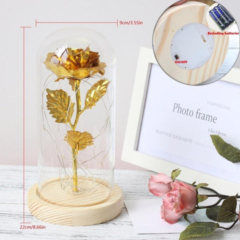 Beauty And The Beast Luxury Rose
