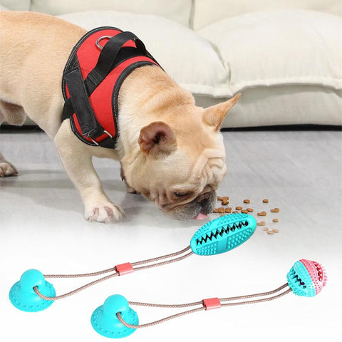 Pet Molar Bite Suction Cup Chew Toy