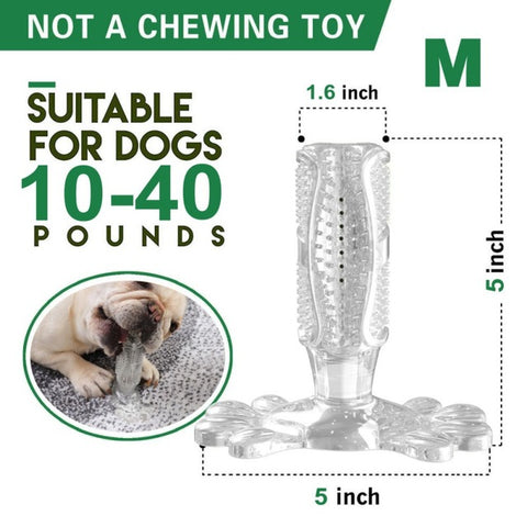 Pet Dog Toothbrush Chew Toy