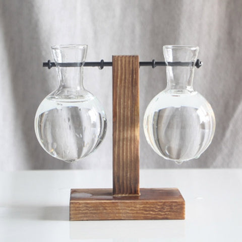 Image of Indoor Hydroponics Tabletop Glass Vases