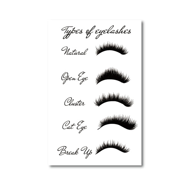 Eyelash Types Prints Woman's Lashes Expansion Poster Modern Fashion Makeup Wall Art Canvas Painting Picture Girls Room Decor