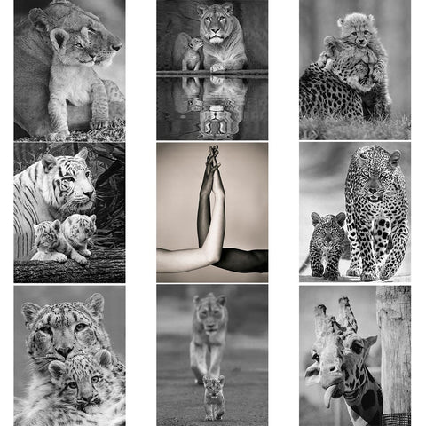 Black White Diamond Painting Mom Love Full Square Diamond Embroidery Animals Picture 5D Diy Mosaic Rhinestone Home Decor