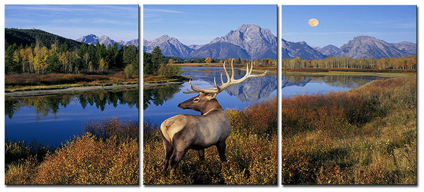 BANMU 3 Panels Deer Stag by the Lake in the Forest Pictures Prints on Canvas Animal Wall Painting for Home Modern Decoration