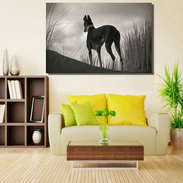 HDARTISANBlack And White Greyhound Gazing  Greyhounds CAN Sit oil painting on Canvas wall painting picture for Living Room