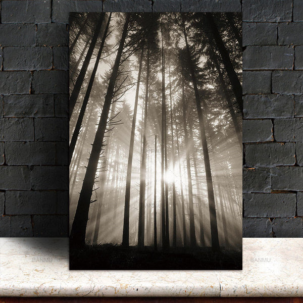 Sun Forest Nordic poster Abstract Hope Wall Pictures Living Room Landscape Art Decoration Picture Scandinavian Canvas Painting
