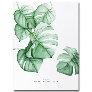 Framed Canvas Wall Art Decor Print Botanical Vegetables Poster Pictures for Home