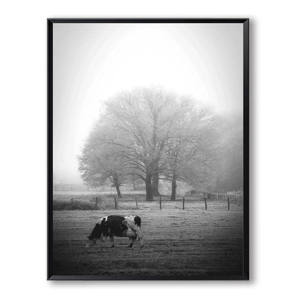 Grey Black Cow Swan Posters Canvas Print Wall Art Canvas Painting Nordic Poster Picture Wall Pictures For Living Room Unframed