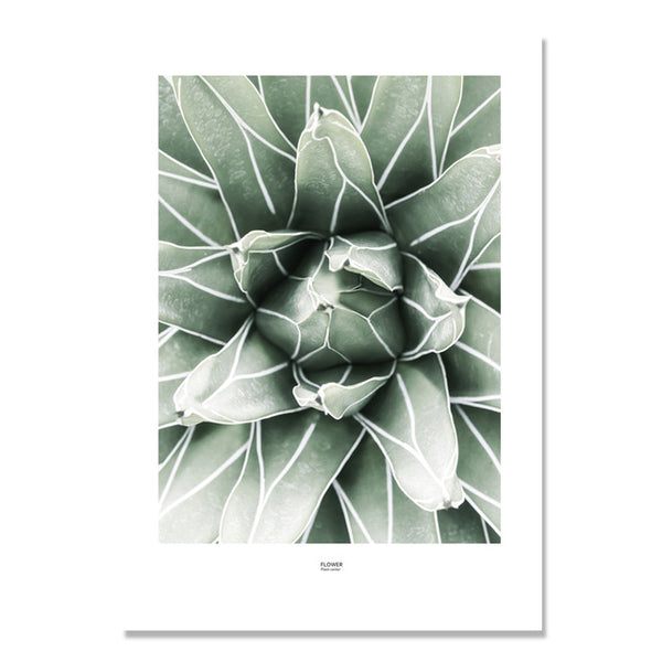 Cactus Potted Green Plants Leaf Wall Art Canvas Painting Cuadros Nordic Poster Picture Wall Pictures For Living Room Unframed