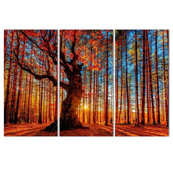 HD Printed Modern Wall Art Pictures Painting 3 Piece/Pcs Autumn Maple Sunset View Home Decoration Poster Framework Living Room