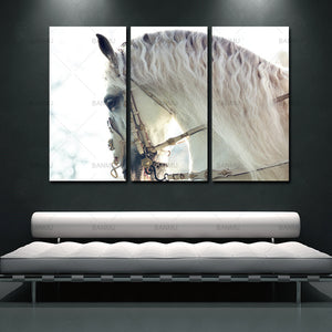 canvas painting wall 3 Panels Unframed Canvas Photo Prints White Horse Animal Wall Art Picture Canvas Paintings Wall Decorations
