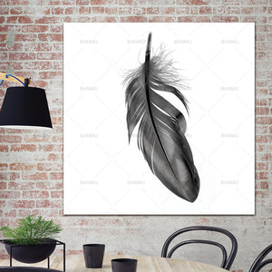 Canvas painting Feather wall art picture poster and print  plant  Art picture Prints Home Decoration print for living room art
