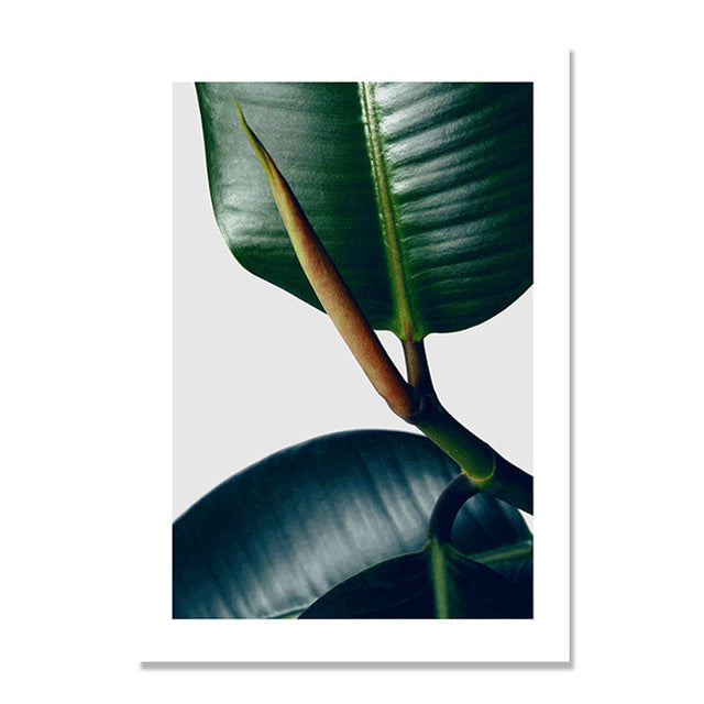 Dark Green Leaf Plants Nordic Poster Wall Art Canvas Painting Posters And Prints Abstract Wall Pictures For Living Room Unframed