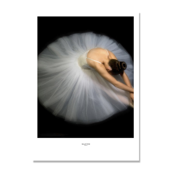 Ballet Skirt Girl Nordic Poster Wall Art Canvas Painting Wall Pictures For Living Room Posters And Prints Cuadros Unframed