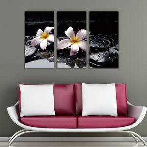 3 Panel Stone White Flower Painting Modern Wall Art Canvas Printed Painting Decorative Picture for Bedroom No Frame