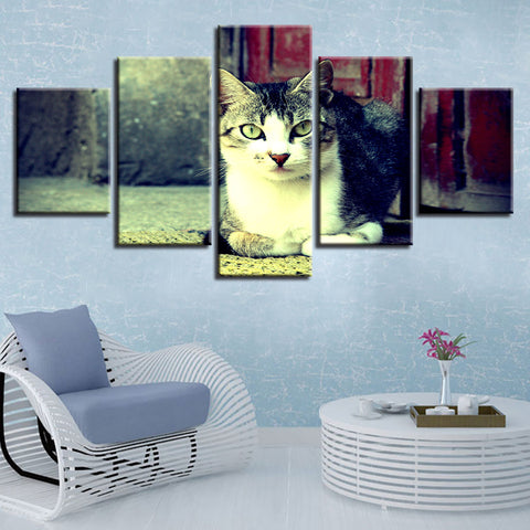 Print Poster Decor Modern Living Room 5 Pieces Cute Black And White Cat Animals Wall Art Paintings Frame Modular Canvas Pictures