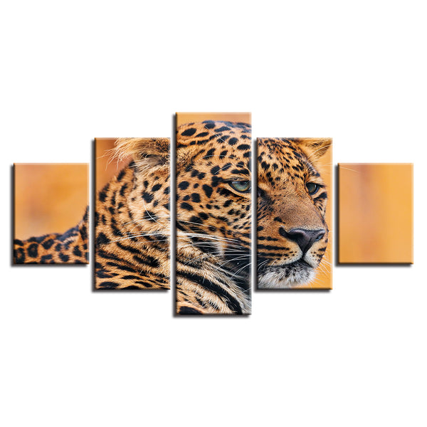 Painting Style Wall Modular Pictures For Living Room 5 Panel The Leopard Art Canvas Cuadros Modern Framework Decoration