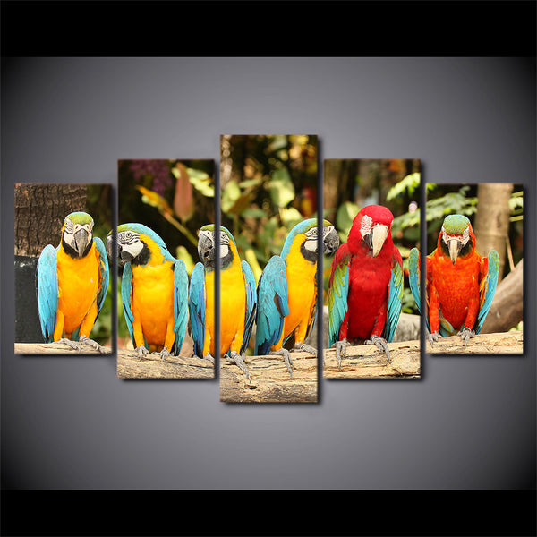 HD Printed Canvas Poster Frame Home Decor 5 Piece/Pcs Colorful Parrots Animal Art Painting Modular Living Room Wall Pictures