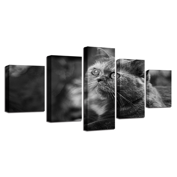 Living Room Wall Art Pictures On Canvas HD Printed 5 Panel Lovely Animal Cat Modern Painting Home Decoration Posters Framework