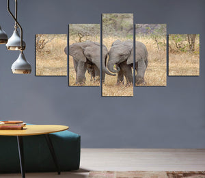 5 Pcs works field two elephant animals play picture canvas painting picture adornment child room sitting room home decor FA216