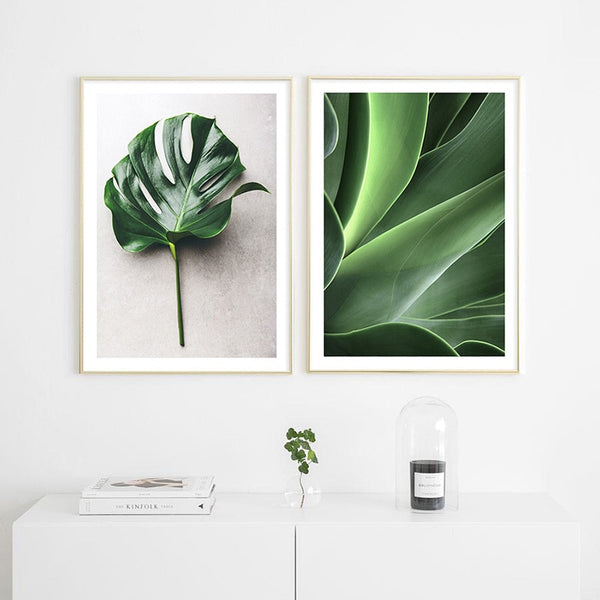 Monstera Leaf Succulent Botanical Scandinavian Poster Nordic Canvas Art Print Painting Wall Picture for Living Room Decoration