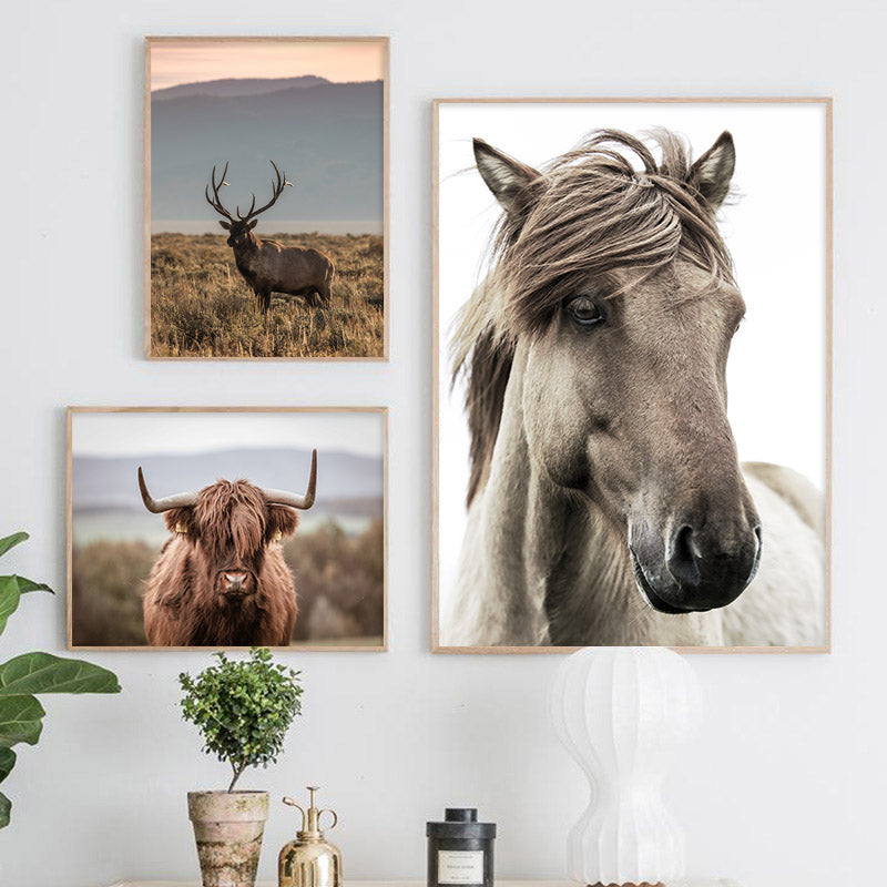 Horse Cattle Field Scandinavian Poster Nordic Style Nature Wall Art Canvas Print