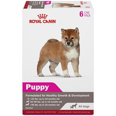 Royal Canin Canine Health Nutrition Puppy in Gel Canned Dog Food for All Size Dogs, 13.5 oz - 6 Pack