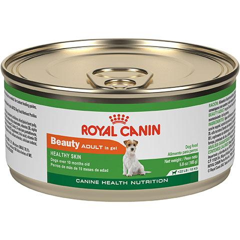 Royal Canin Canine Health Nutrition Beauty Adult in Gel Canned Dog Food, 24/5.8 oz