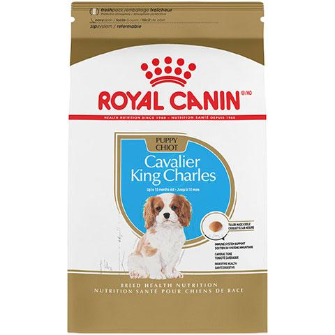 Royal Canin Breed Health Nutrition Cavalier King Charles Puppy Dry Dog Food, 3 lb Bag