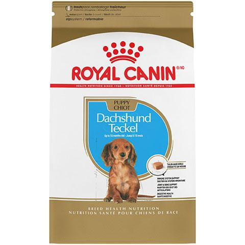 Royal Canin Breed Health Nutrition Dachshund Puppy Dry Dog Food, 2.5 lb Bag