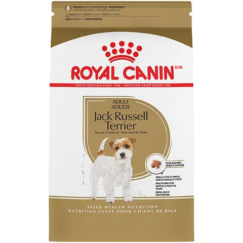 Royal Canin Breed Health Nutrition Jack Russell Terrier Adult Dry Dog Food