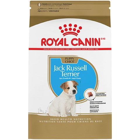 Royal Canin Breed Health Nutrition Jack Russell Terrier Puppy Dry Dog Food, 3 lb Bag