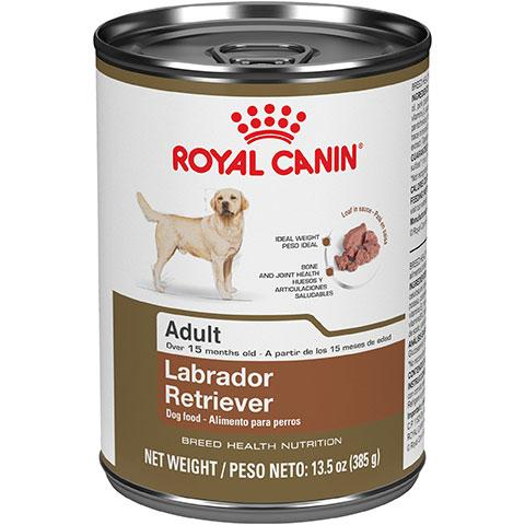 Royal Canin Breed Health Nutrition Labrador Retriever Adult Canned Dog Food, 13.5 oz