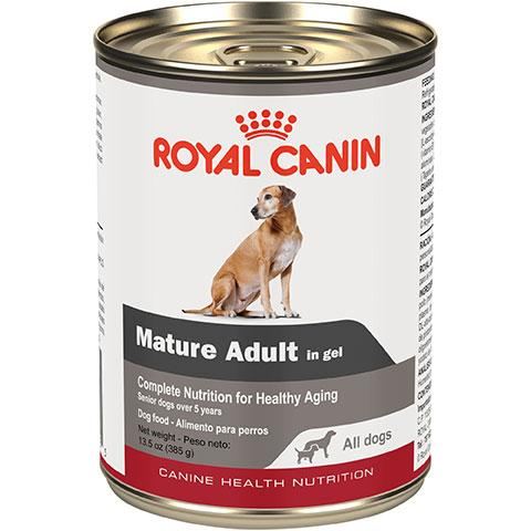 Royal Canin Canine Health Nutrition Mature Adult In Gel Wet Dog Food, 13.6 oz