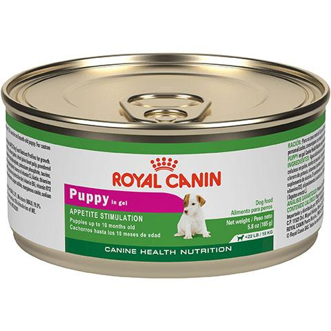 Royal Canin Canine Health Nutrition Puppy In Gel Canned Dog Food For Toy And Small Dogs