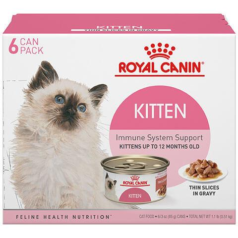 Royal Canin Feline Health Nutrition Kitten Thin Slices In Gravy Canned Cat Food - 6/3 oz